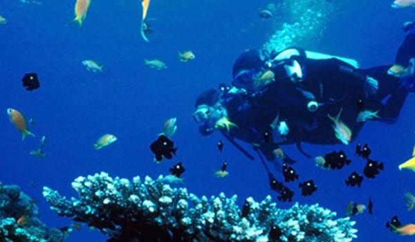 Kish DivingCenter