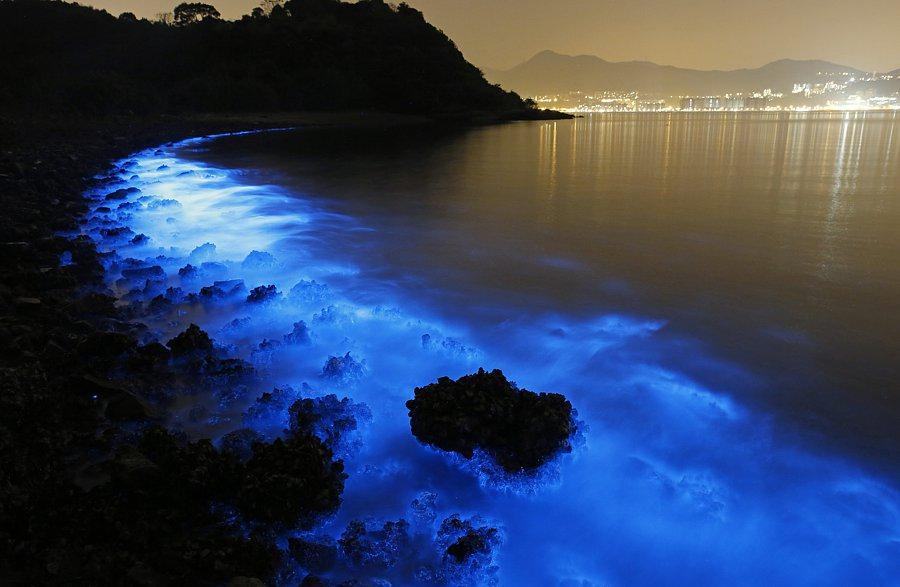 Glowing Beaches of Larak Island- Iran